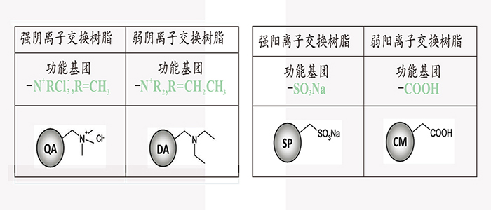 蛋白/抗生素纯化树脂